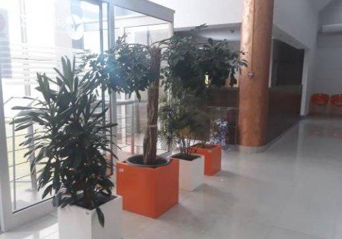 Ekološki efikasan poslovni prostor na Veletržnici Beograd (eco-friendly kancelarije)